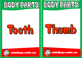 English teaching resources + body parts flashcards